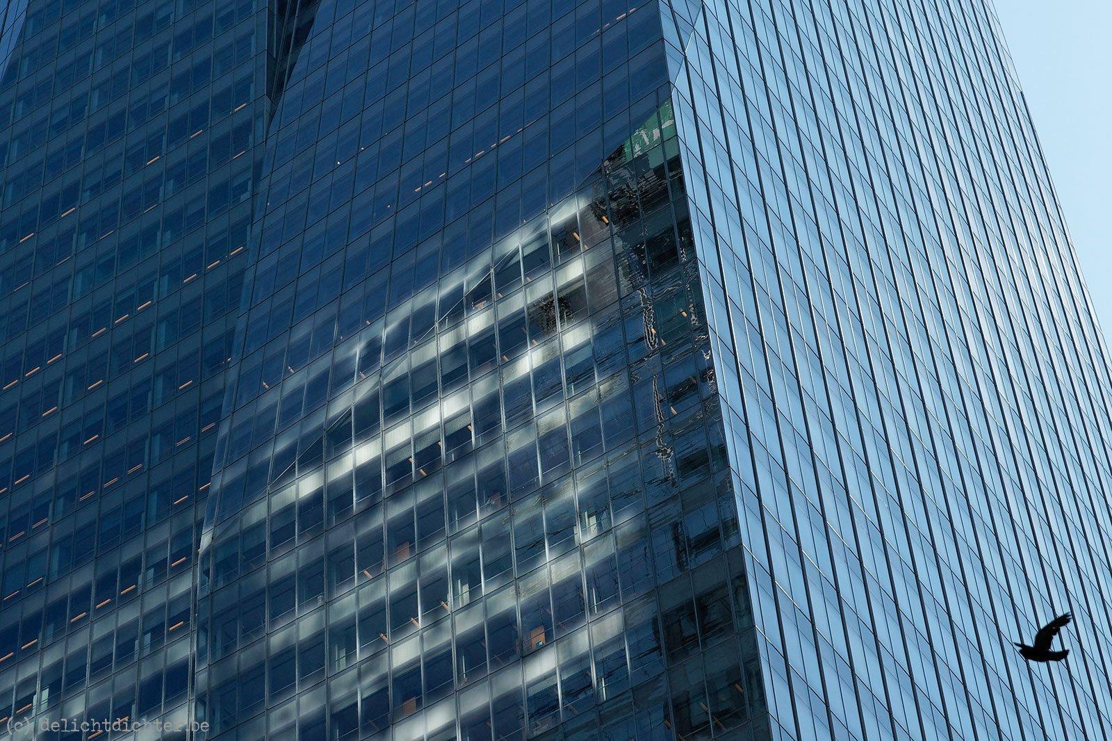 2010_08_nyc_20100813_164805_dxo