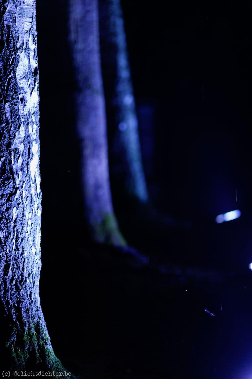 2010_10_nuitmagique_20101023_204531_dxo