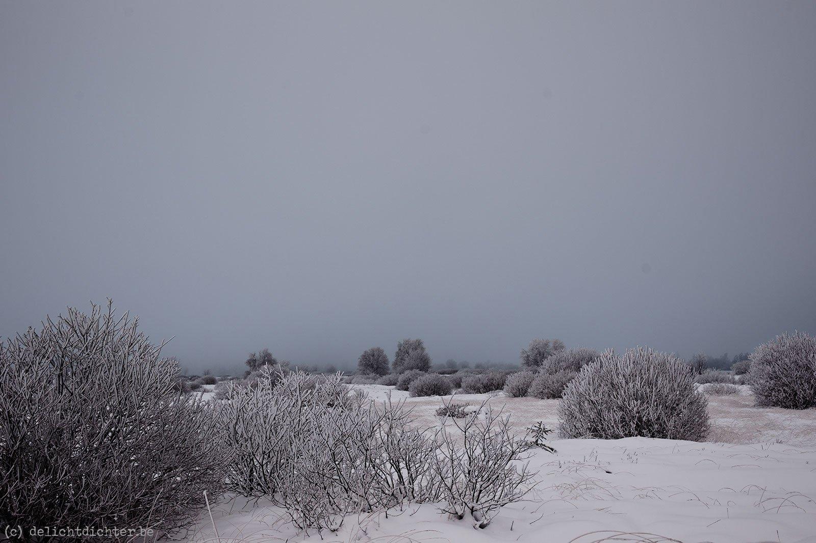 2011_12_sneeuw_20111219_122314_dxo_v7