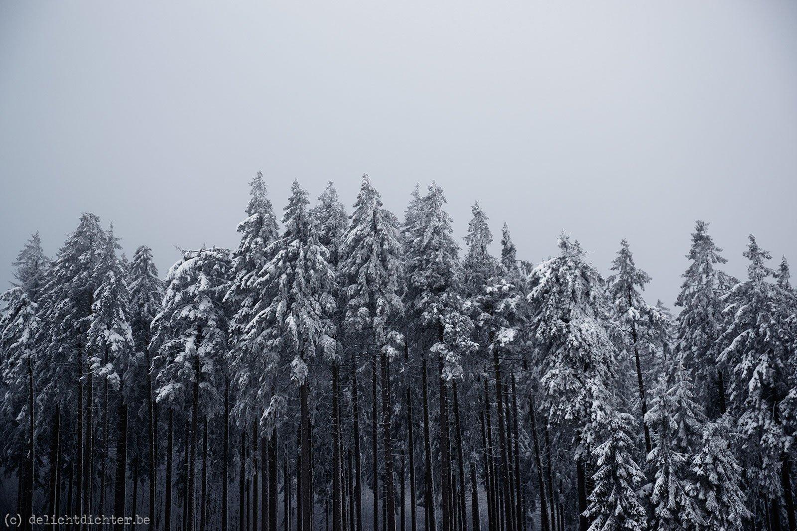 2011_12_sneeuw_20111219_123340_dxo_v7