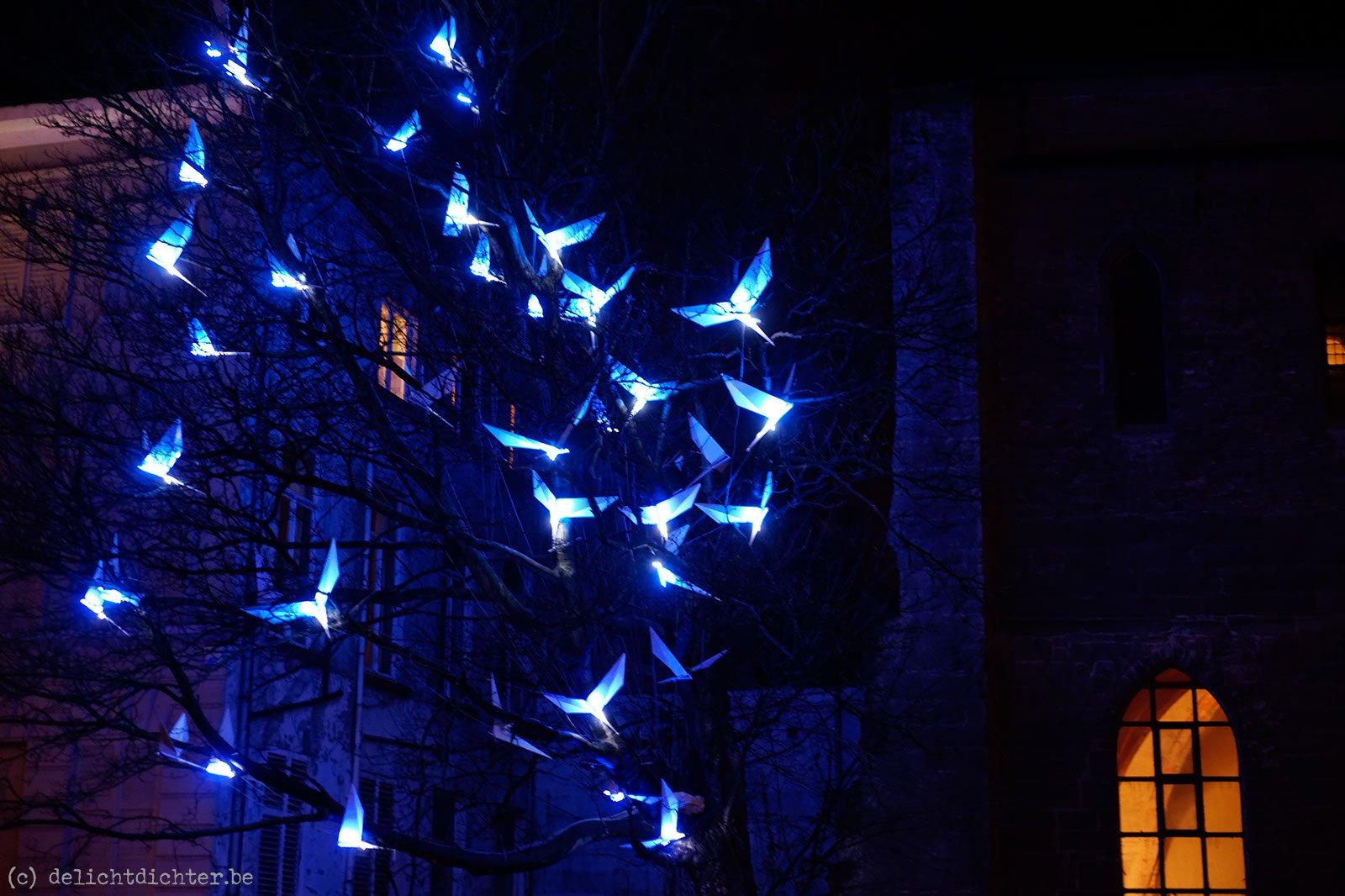 2012_01_lichtfestival_20120126_222304_dxo_v7