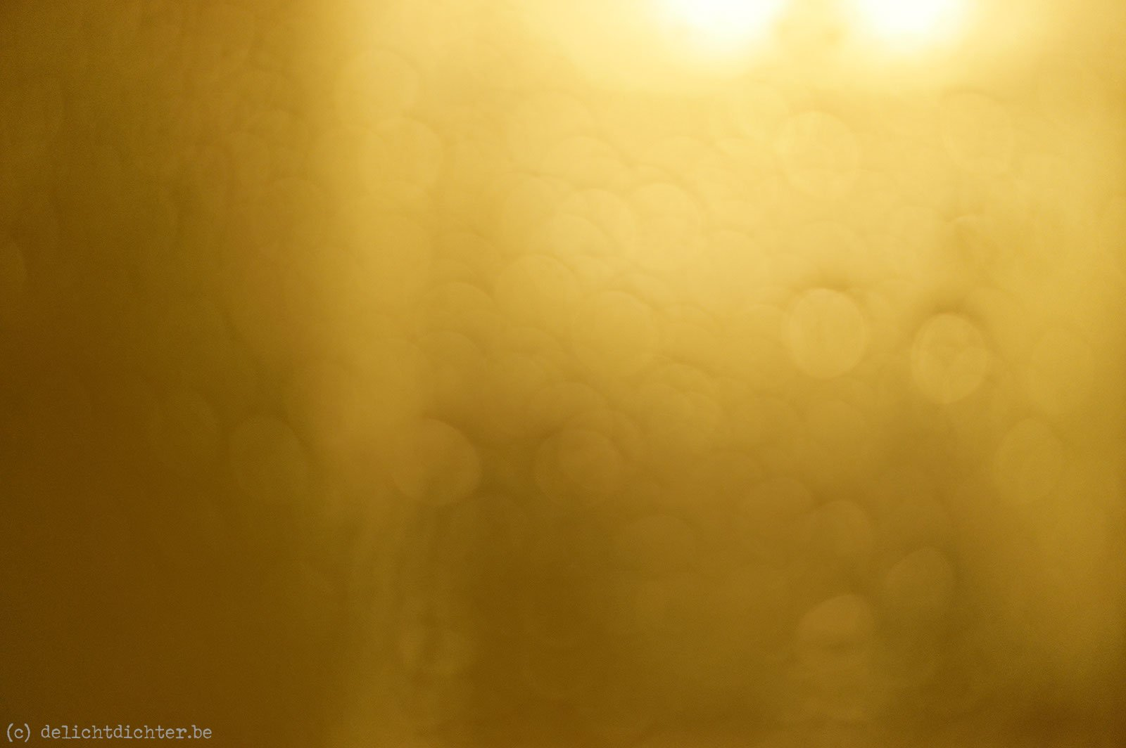 2012_02_nyc_20120214_135555_dxo_v7