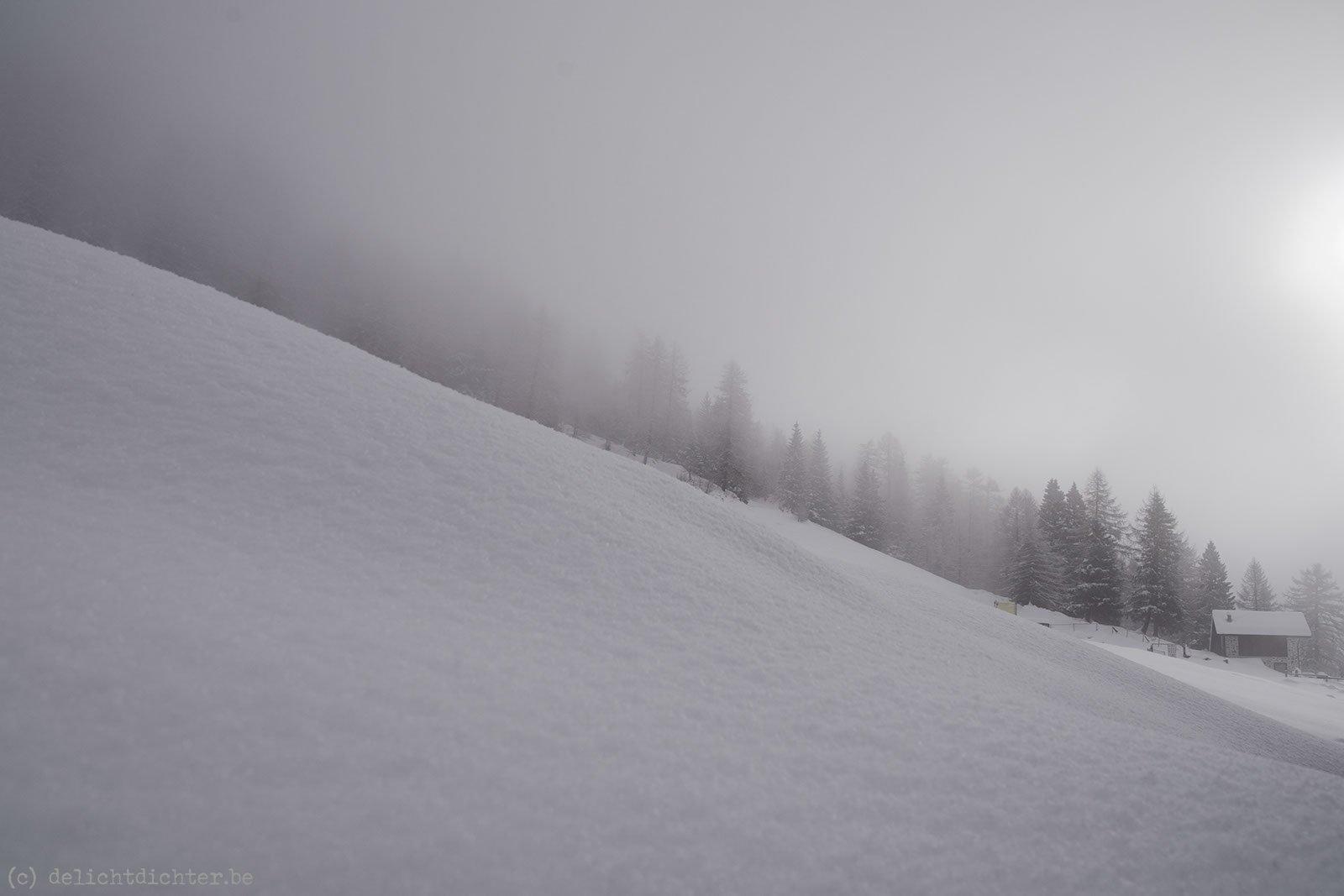 2013_12_sneeuwschoenen_20131229_115812_dxo_v9