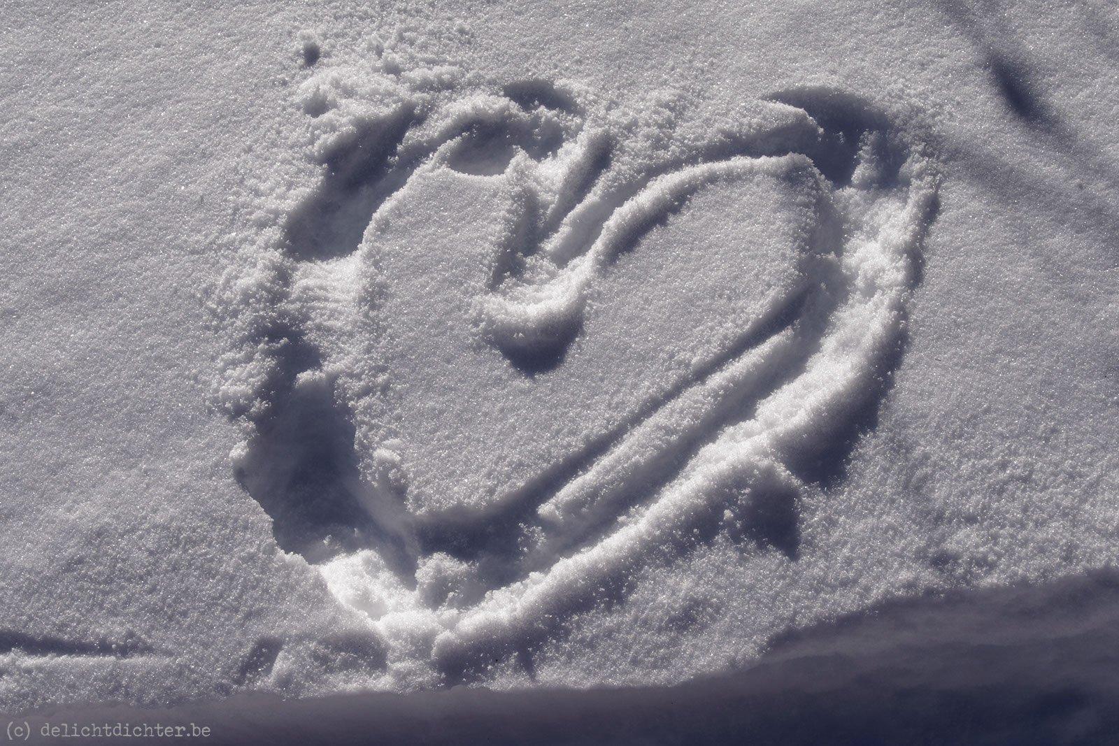 2013_12_sneeuwschoenen_20131231_144602_dxo_v9