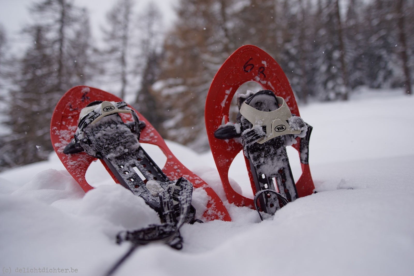 2013_12_sneeuwschoenen_20140102_120228_dxo_v9