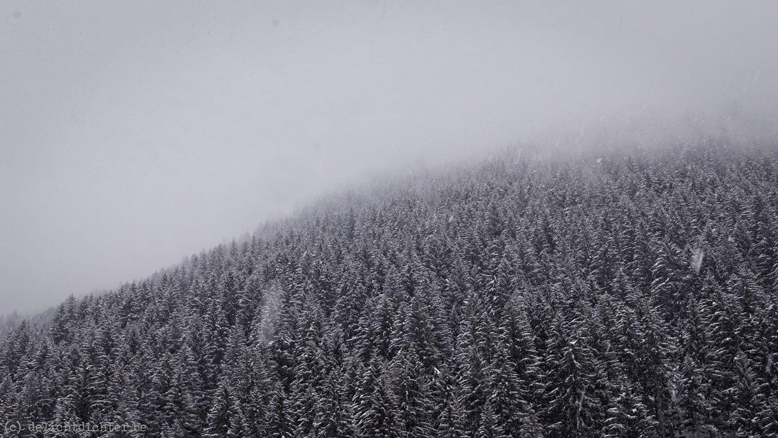 2013_12_sneeuwschoenen_20140102_143210_dxo_v9
