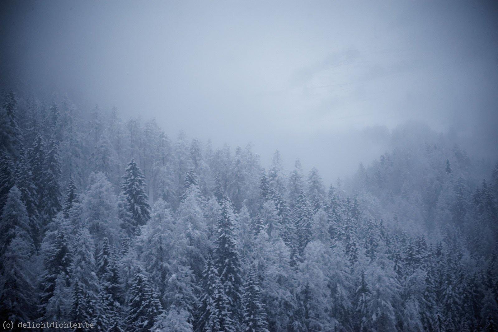 2013_12_sneeuwschoenen_20131229_075008_dxo_v9