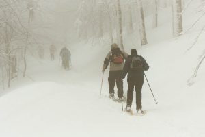 Sneeuwschoenen, Vogezen, maart 2003