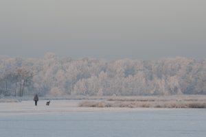 Koning Winter, januari 2009