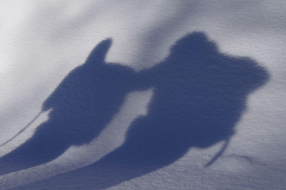 Sneeuwschoenen, Nieuwjaar 2014