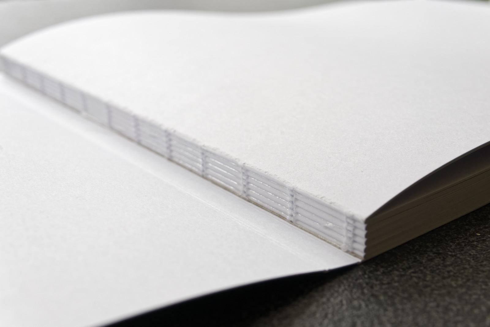 Zwitserse binding